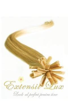 Extensii cheratina Blond Aluna #12